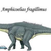 Amphicoelias (Amphicoelias fragillimus).jpg