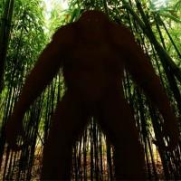 Gigantopithecus (Gigantopithecus blacki).jpg