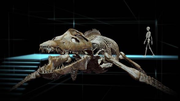 Kronosaurus.jpg
