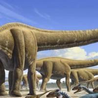 Mamenchisaurus (Mamenchisaurus sinocanadorum).jpg